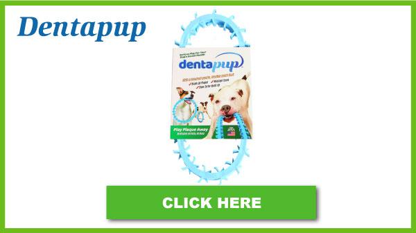 Dentapup